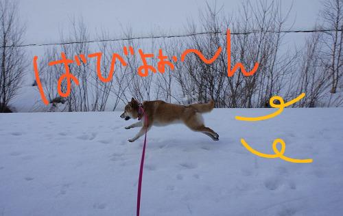 走ります。