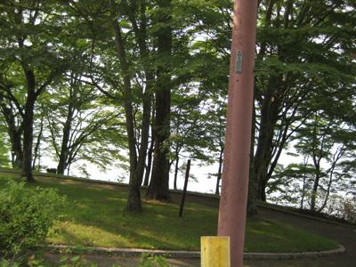 山中湖畔2