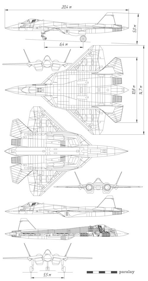 100601_pak-fa_diagram.jpg