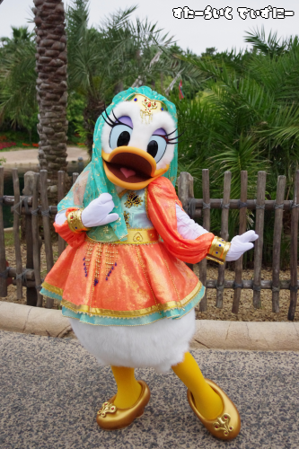 110625arabian coast-daisy1