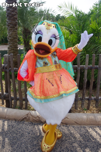 110806arabian coast-daisy1
