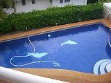 dolpool