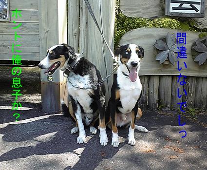 TRY&KIRA 2