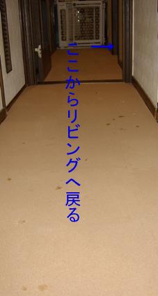 コルクマット(リビング→廊下)