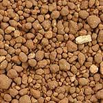 水稲育苗培土の粒