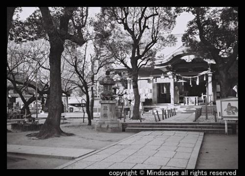 高津の宮2