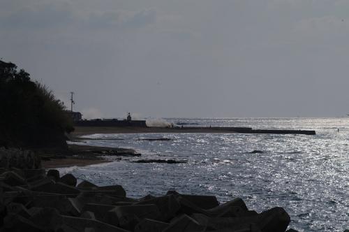 冬らしかざる海