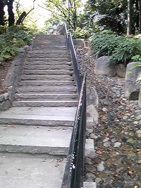 窪町東公園6