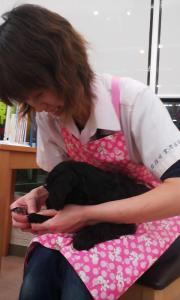 2012-2-29 きなこ赤ちゃんの爪きり 1