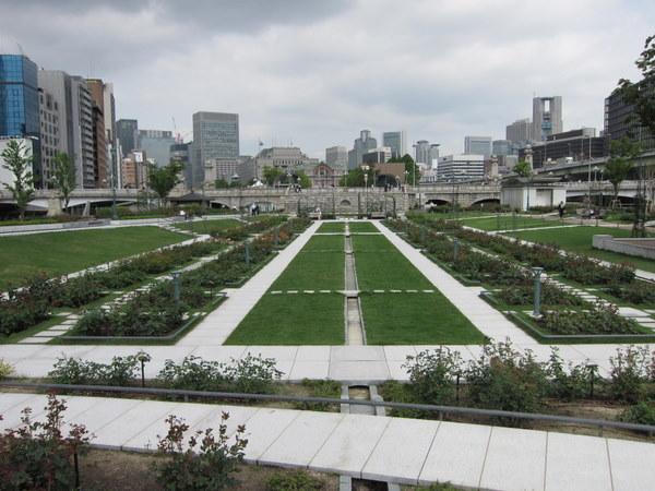 中ノ島公園のバラ園1