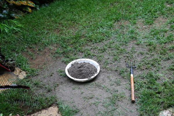 芝庭への砂入れ2