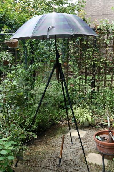 日傘をセット