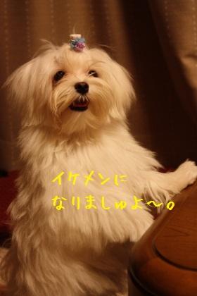 IMG_1705-1.jpg