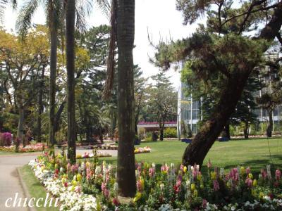 亜熱帯植物園2