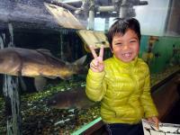 しながわ水族館3