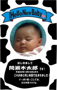 赤ちゃん米 牛