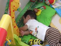 おもちゃの中でお昼寝