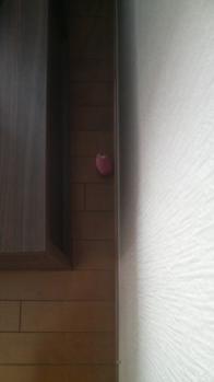 テレビ裏P1000016(17)
