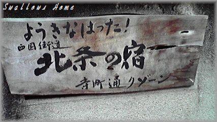 2009101713390000.jpg