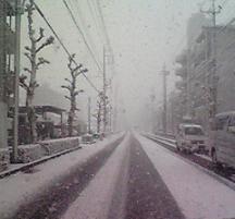 yuki113.jpg
