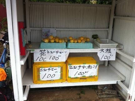 food_01_1.jpg