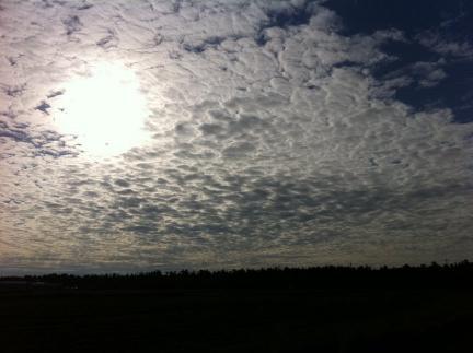 sky_14.jpg