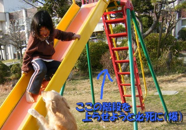 DSCF4035b.jpg