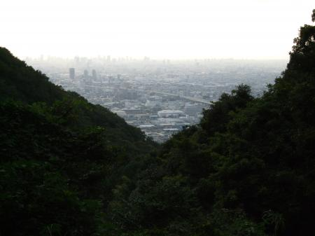 13酷道308 大阪平野