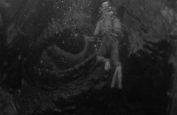 水爆と深海の生物-5