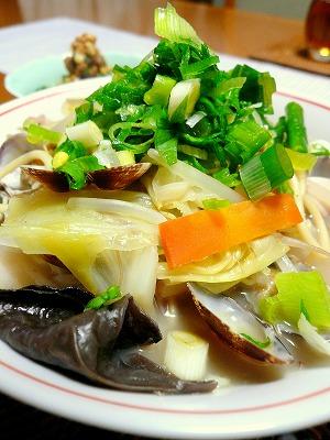 091105ちゃんぽん麺