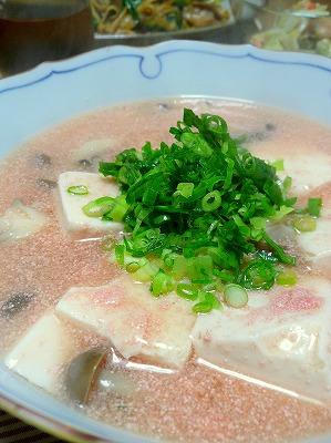 100511明太豆腐