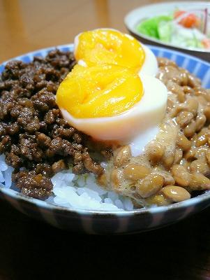 100524スタミナ丼