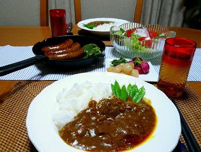 100530夕食