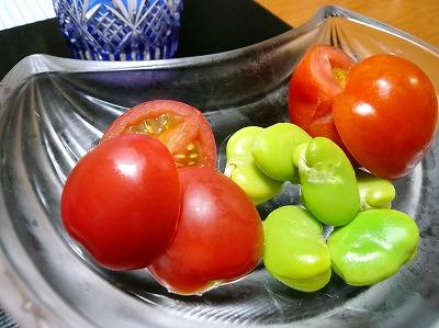 100608トマト食べ比べ