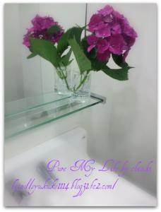 会社の紫陽花3
