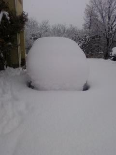 フィット雪3