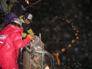 秋鮭漁 4