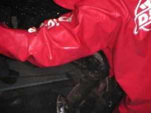 秋鮭漁 12