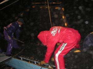 秋鮭漁 9