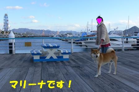 ヨットだ~!