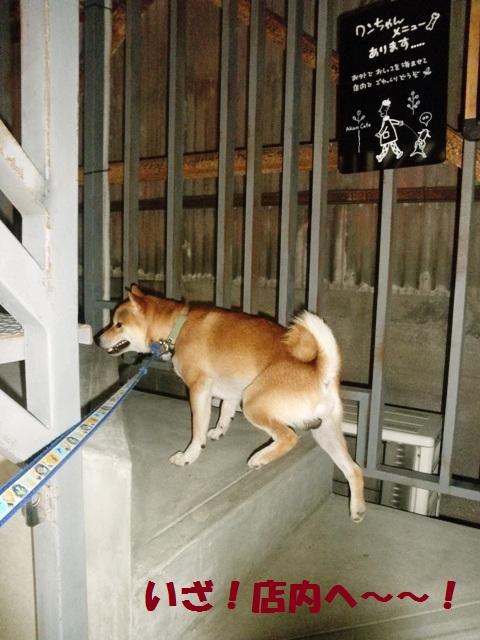 二階なんだ~!