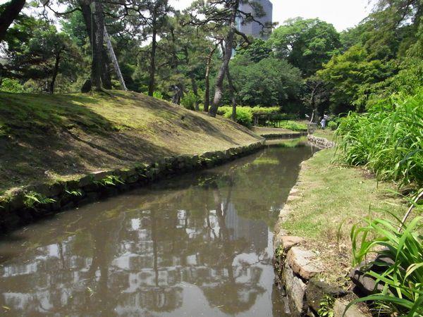 神田川上水跡