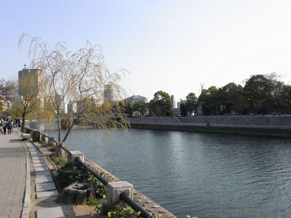 201132812.jpg