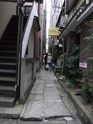 201161544.jpg