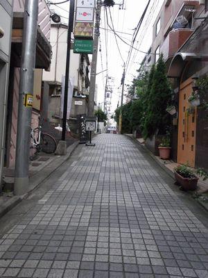 201161550.jpg