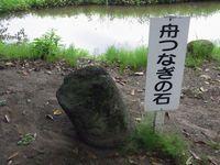 201162919.jpg