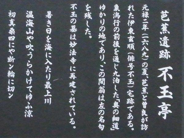 201162938.jpg