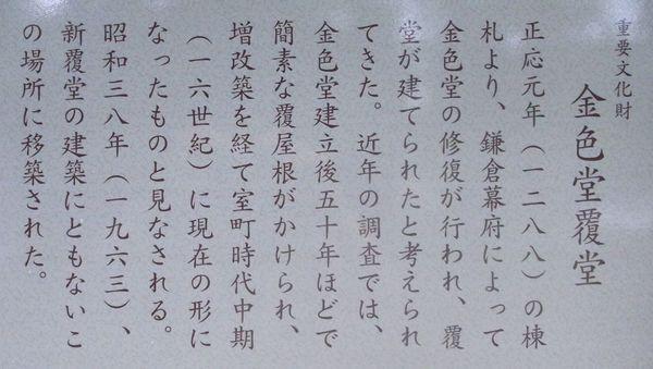 201172619.jpg