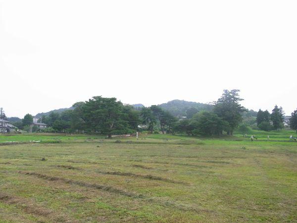 201172640.jpg