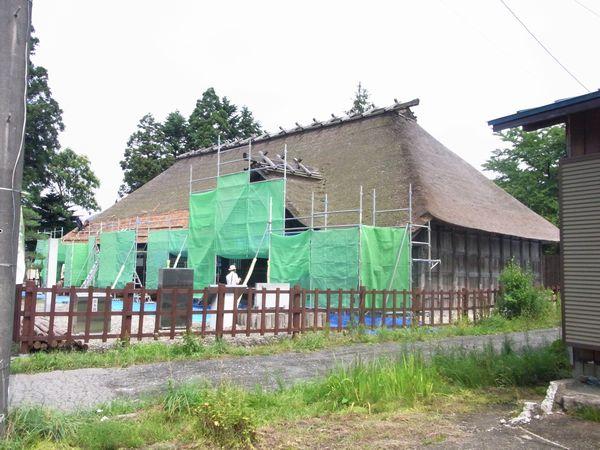 20117271.jpg